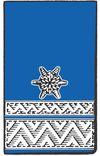 BM d.V. - Brandmeister der Verwaltung