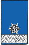 LM d.V. - Löschmeister der Verwaltung